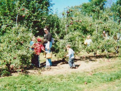 mother with her children picking apples